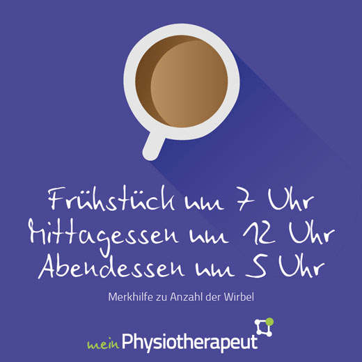 Portal meinPhysiotherapeut